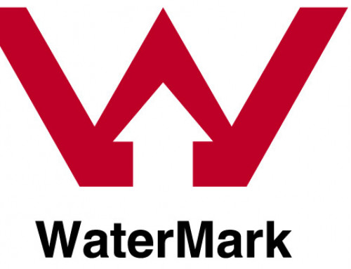 Understanding The WaterMark Process